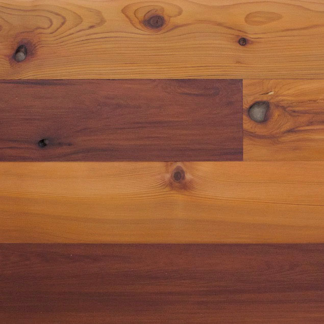 Reclaimed Western Red Cedar Paneling with Clear Oil Finish